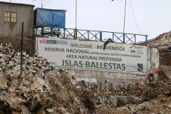 iles-Ballestas04