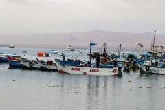 iles-Ballestas02
