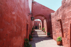 Santa-Catalina13