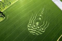 crops10