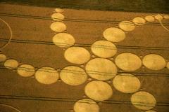 crops23