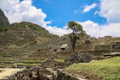 Machu-Pichu40